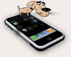 pies siedzący na iphone'ie